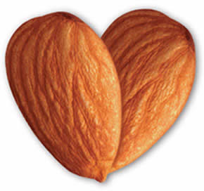 Two almonds in a heart shape
