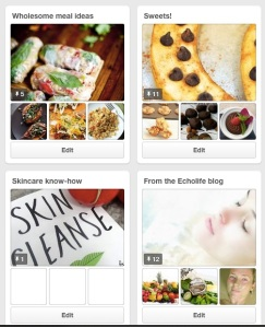 Echolife Pinterest Page featuring four boards
