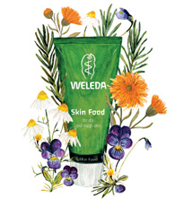 Weleda Skin Food Drawing with Ingredients